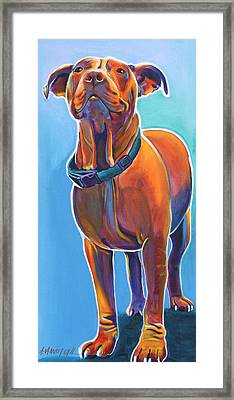 Pit Bull - Triumph Framed Print by Alicia VanNoy Call