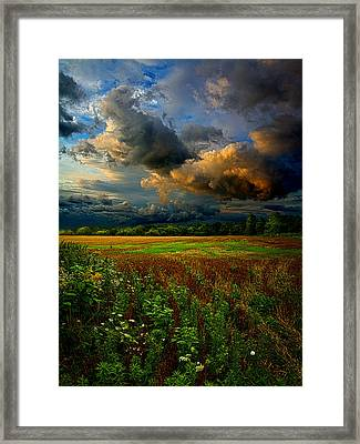 Places In The Heart Framed Print by Phil Koch