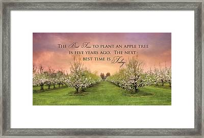 Plant An Apple Tree Framed Print by Lori Deiter