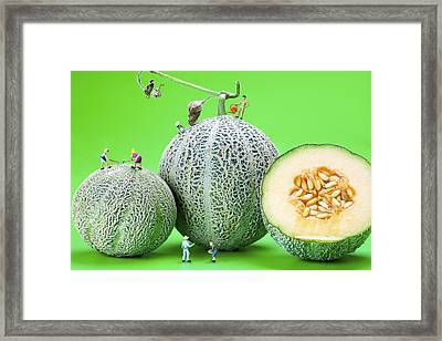 Planting Cantaloupe Melons Little People On Food Framed Print by Paul Ge