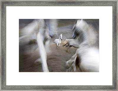 Play Ground Framed Print by Milan Malovrh