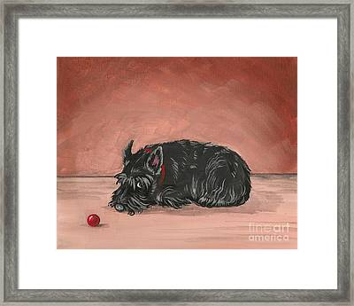 Play With Me Framed Print by Margaryta Yermolayeva