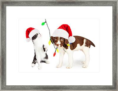 Playful Christmas Kitten And Puppy Framed Print by Susan  Schmitz