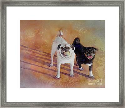 Playtime Framed Print by Amy Kirkpatrick