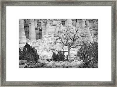 Plaza Blanca New Mexico Framed Print by Mary Lee Dereske