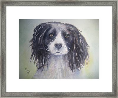 Pleeeese Play Framed Print by Patricia Pushaw