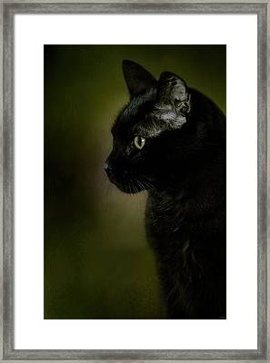 Plotting The Next Move Framed Print by Jai Johnson