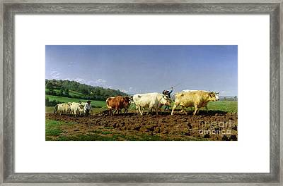 Ploughing In Nivernais Framed Print by Rosa Bonheur