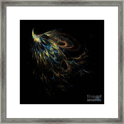 Plumage Framed Print by Alina Davis