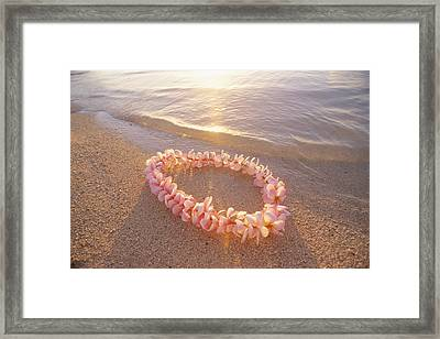 Plumeria Lei Shoreline Framed Print by Mary Van de Ven - Printscapes
