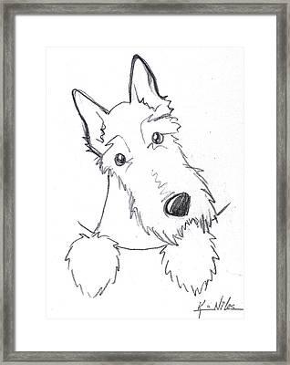 Pocket Scottie Sketch Framed Print by Kim Niles