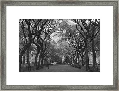 Poets Walk In Central Park Framed Print by Christopher Kirby