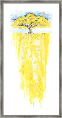 Poinciana Tree Yellow Framed Print by Anthony Burks Sr