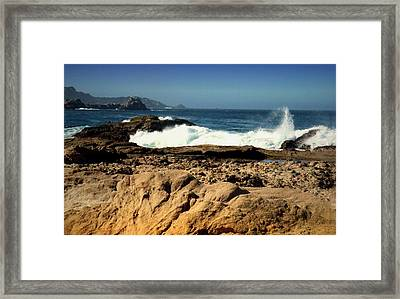 Point Lobos Shore Framed Print by Joyce Dickens