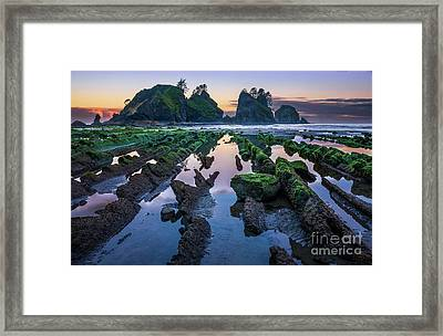 Point Of The Arches Framed Print by Inge Johnsson