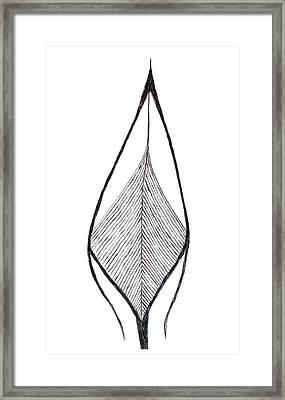 Pointed Framed Print by Matthew Guertin