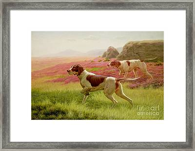 Pointers In A Landscape Framed Print by Harrington Bird