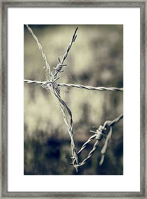 Pointy Droplets Framed Print by Caitlyn  Grasso