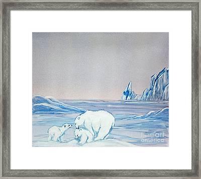 Polar Ice Framed Print by Terri Mills