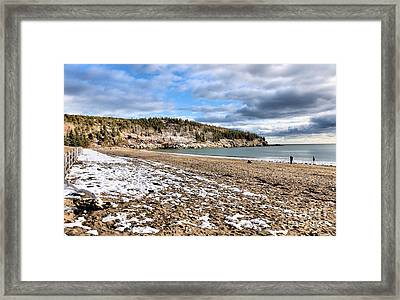 Polar Plunge On Mdi Framed Print by Elizabeth Dow