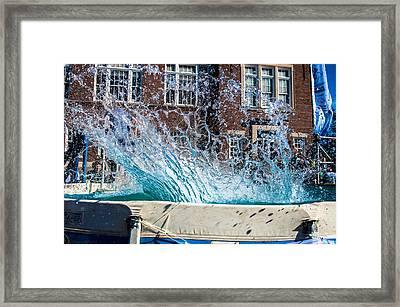Polar Plunge Splash 2 Framed Print by William Wight