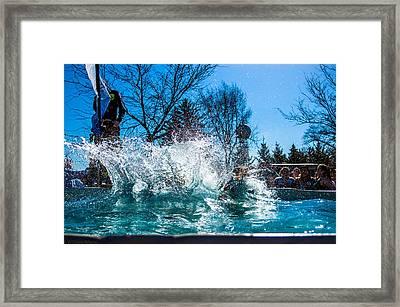 Polar Plunge Splash Framed Print by William Wight
