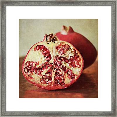 Pomegranate Framed Print by Pamela N. Martin