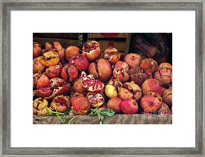 Pomegranates Framed Print by Marion Galt