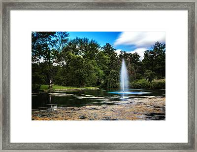 Pond At Spring Grove Framed Print by Tom Mc Nemar