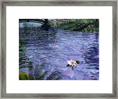 Pond Framed Print by Cynthia Decker