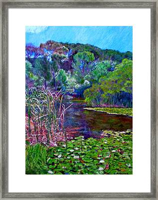 Pond Of Tranquility Framed Print by Michael Durst