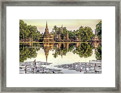 Pond Reflection Framed Print by Maria Coulson