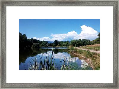 Pond Reflections At Bear Creek Trail Colorado Framed Print by Gretchen Wrede