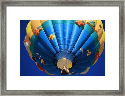 Pondemonium Framed Print by Donna Kennedy