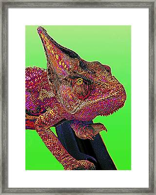 Pop Art Chameleon Framed Print by L S Keely