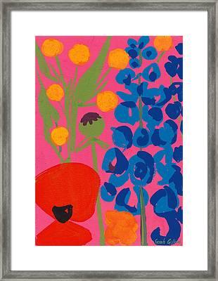 Poppy And Delphinium Framed Print by Sarah Gillard
