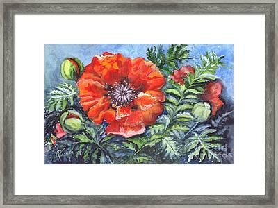 Poppy Brilliance Framed Print by Carol Wisniewski