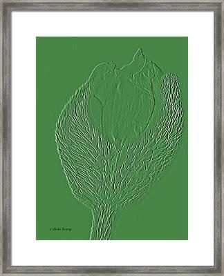 Poppy Embossing  Framed Print by Chris Berry