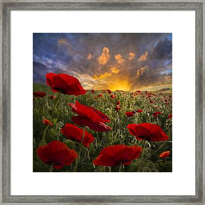 Poppy Field Framed Print by Debra and Dave Vanderlaan