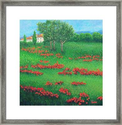 Poppy Field In Italy Framed Print by Lore Rossi