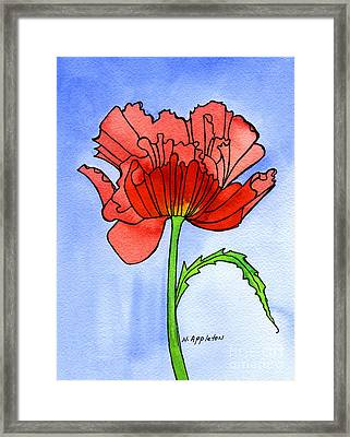 Poppy Framed Print by Norma Appleton