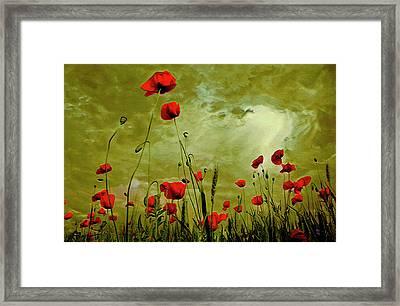 Poppy Petals Framed Print by  Fli Art