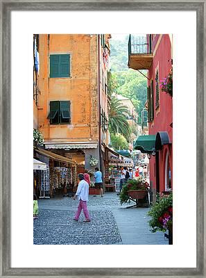 Portofino 6 Framed Print by Al Hurley