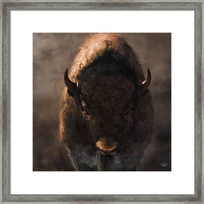 Portrait Of A Buffalo Framed Print by Daniel Eskridge