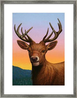 Portrait Of A Red Deer Framed Print by James W Johnson