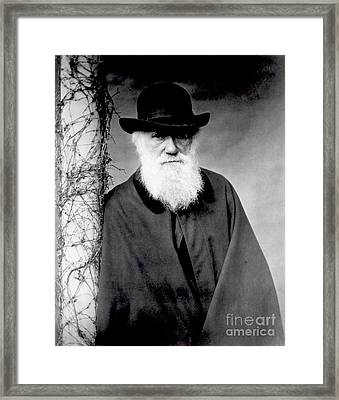 Portrait Of Charles Darwin Framed Print by Julia Margaret Cameron