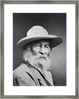 Portrait Of Walt Whitman Framed Print by Underwood Archives