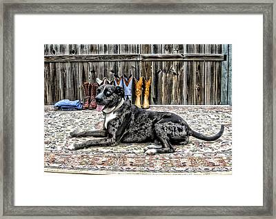 Posing Pretty Framed Print by K Marie