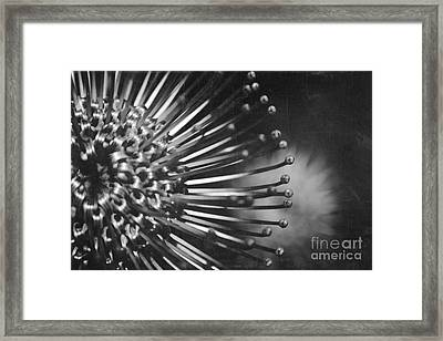 Possibility Is The Secret Heart Of Time Framed Print by Sharon Mau