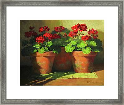 Potted Geraniums Framed Print by Linda Jacobus